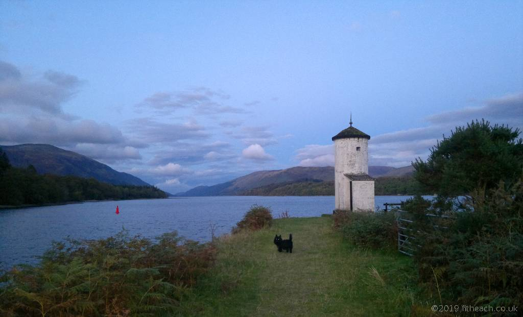 Neachdainn, the Scottish Terrier, standing at the loch shore with a glint in his eyes.